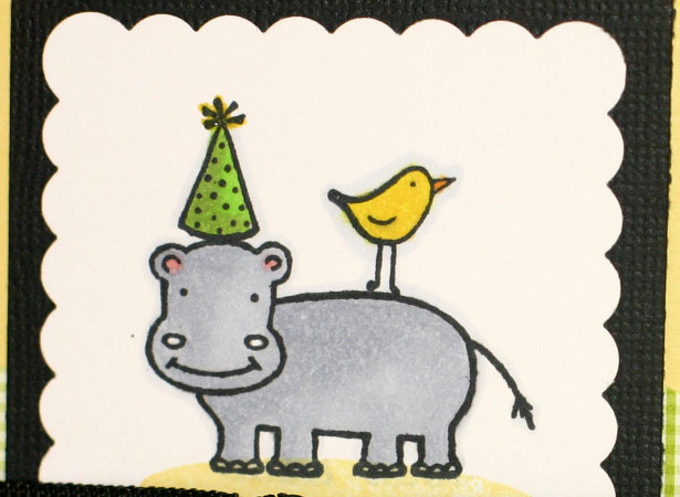 hippo birdie - Bitterman