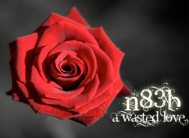 wasted love - n8Eb